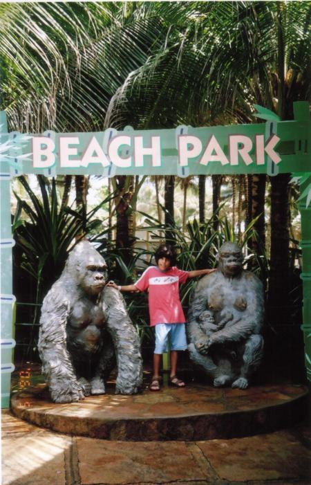 João Beach Park